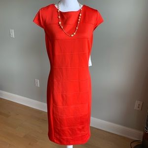 Studio one cap sleeve sheath dress, NWT, sz 16